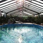 Abris hauts piscine (1)